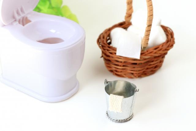 水ピカとパストリーゼの違いは?トイレ掃除には最適なのはどっち?