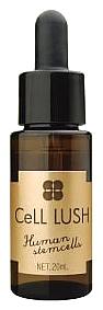 ブレーンコスモス セルラッシュ(20ml)美容液